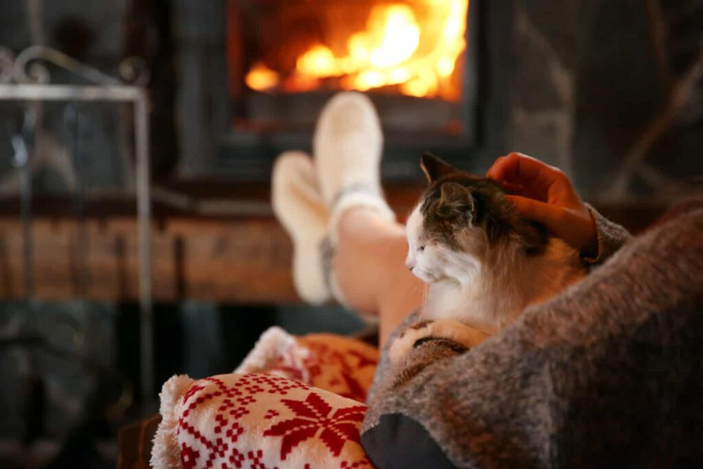 Woman resting with cat near fireplace